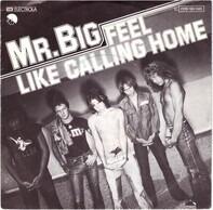 Mr Big - Feel Like Calling Home