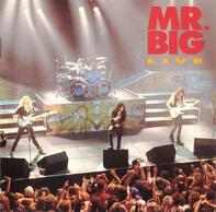 Mr. Big - Live