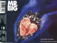 Mr. Big - Just Take My Heart