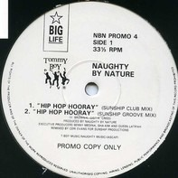 Naughty By Nature - Hip Hop Hooray (Sunship Remixes)