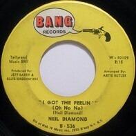 Neil Diamond - I Got The Feelin' (Oh No No)