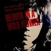 Nick Drake - Heaven In A Wild Flower - An Exploration Of Nick Drake