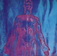 Nirvana - Sliver | Dive