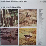 No Artist - Stimmen Der Vögel Mitteleuropas