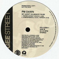 P.M. Dawn - A Watcher's Point Of View (Don't 'Cha Think) / Set Adrift On Memory Bliss