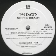 P.M. Dawn - Night In The City