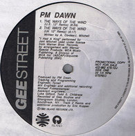 P.M. Dawn - The Ways Of The Wind