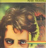 Peter Hammill - Vision