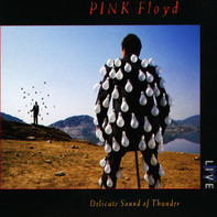 Pink Floyd - Delicate Sound Of Thunder.