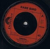 Rare Bird - Virginia