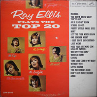 Ray Ellis And His Orchestra - Ray Ellis Plays The Top 20