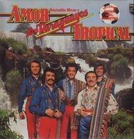 Reynaldo Meza Y Los Paraguayos - Amor Tropical