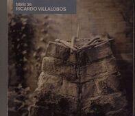 Ricardo Villalobos - Fabric 36