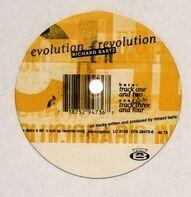 Richard Bartz - Evolution+Revolution
