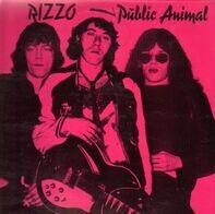 Rizzo - Public Animal