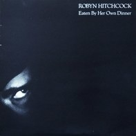 Robyn Hitchcock - Eaten By Her Own Dinner