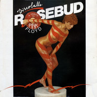 Rosebud - Discoballs (A Tribute To Pink Floyd)