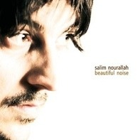 Salim Nourallah - Beautiful Noise