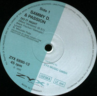 Sammy D. & Passion - Do It Right