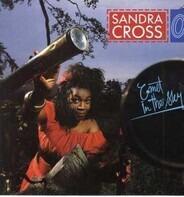 Sandra Cross - Comet in the Sky