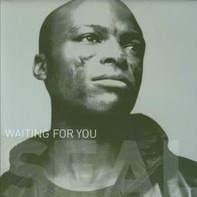 Seal - Waiting For You