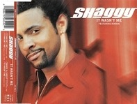 Shaggy Featuring Ricardo 'Rik Rok' Ducent - It Wasn't Me