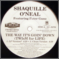 Shaquille O'Neal Featuring Peter Gunz - The Way It's Goin' Down (Twism For Life)
