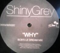 ShinyGrey - Why vs. Eurythmics
