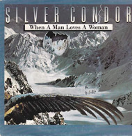 Silver Condor - Trouble at Home