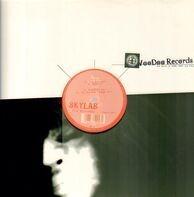 Skylab - The Witness