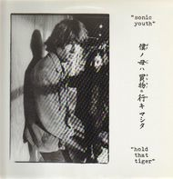 Sonic Youth - Hold That Tiger
