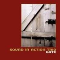 Sound In Action Trio - Gate