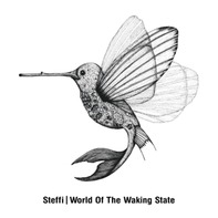 STEFFI - World Of The Waking State (2lp)