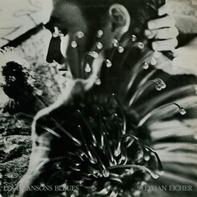 Stephan Eicher - Les Chansons Bleues