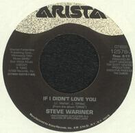Steve Wariner - If I Didn't Love You / The Same Mistake Again