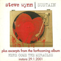Steve Wynn - Sustain (Plus Excerpts From The Forthcoming Album Here Come The Miracles)