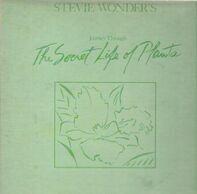 Stevie Wonder - Journey Through the Secret Life of Plants