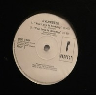 Sylvester - Your Love Is Amazing