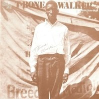 T-Bone Walker - The Inventor Of The Electric Guitar Blues