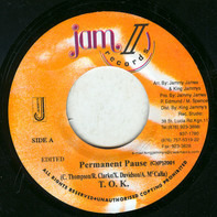 T.O.K. - Permanent Pause