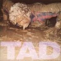 Tad - Salem