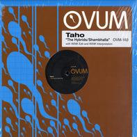 Taho - The Hybrids / Shambhalla