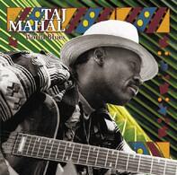 Taj Mahal - World Blues