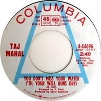 Taj Mahal - You Don't Miss Your Water ('Til Your Well Runs Dry)