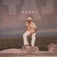 Taj Mahal - Evolution ( The Most Recent)