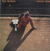 Taj Mahal - Going Home