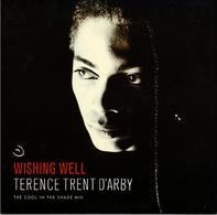 Terence Trent D'Arby - Wishing Well (The Cool In The Shade Mix)