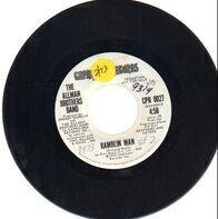 The Allman Brothers Band - Ramblin Man