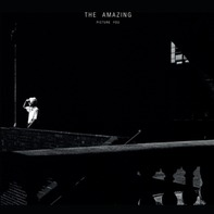 The Amazing - Picture You (2LP+MP3)