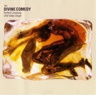 The Divine Comedy - Perfect Lovesong